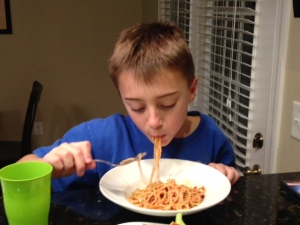 bolognese gray eating